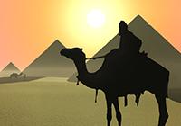 black-camel-pyramids